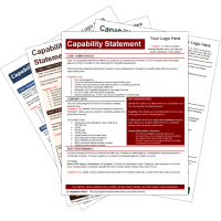 Capability Statement Template Bundle 2 TargetGov